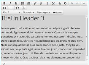 tekst editor